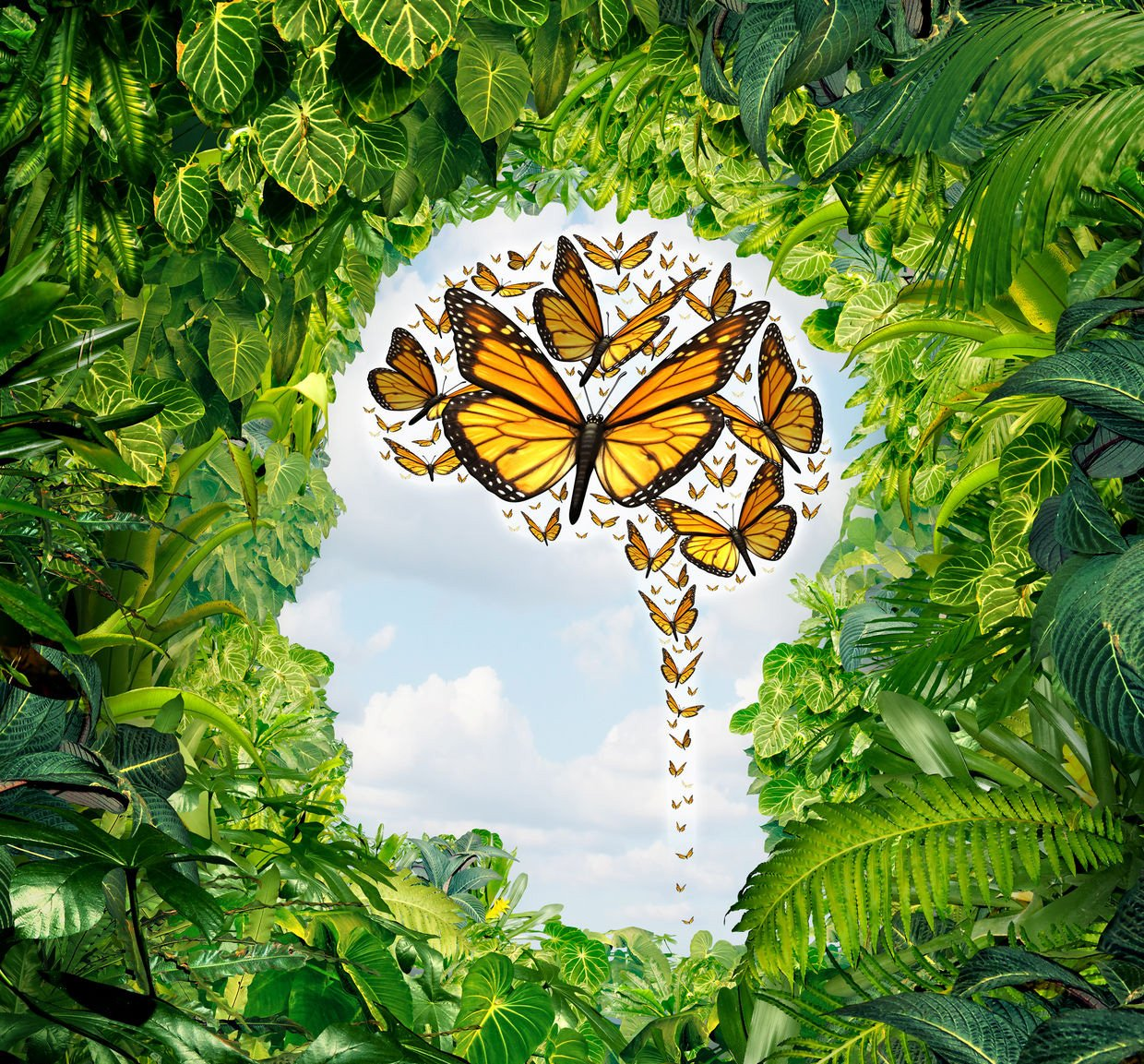 26171428 - intelligence and human creativity as a freedom of ideas symbol on a green jungle landscape shaped as a head and a group of flying monarch butterflies in the shape of a brain as a mental health and education metaphor for the potential of the mind