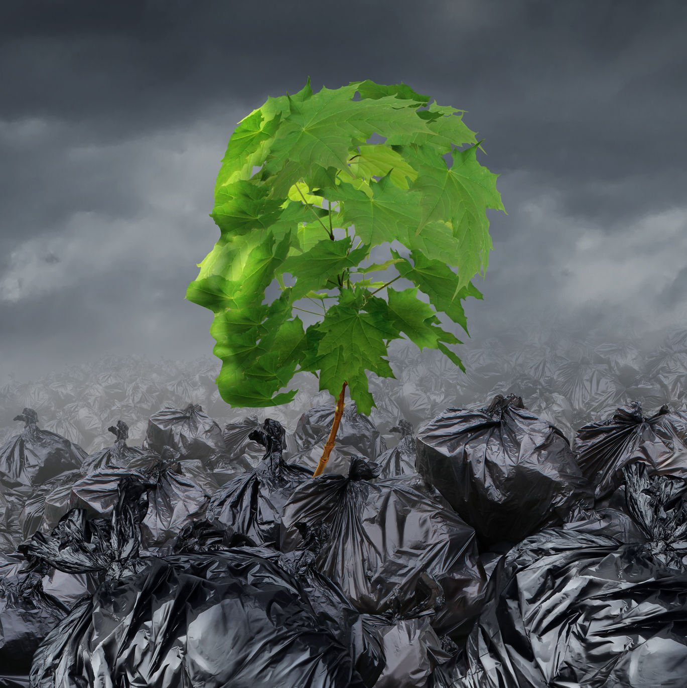 31815614 - rehabilitation concept and rehabilitate a suffering patient medical and mental health symbol going through rehab for drug abuse or emotional damage as a sapling tree with green leaves shaped as a human head growing out of a heap of garbage bags.